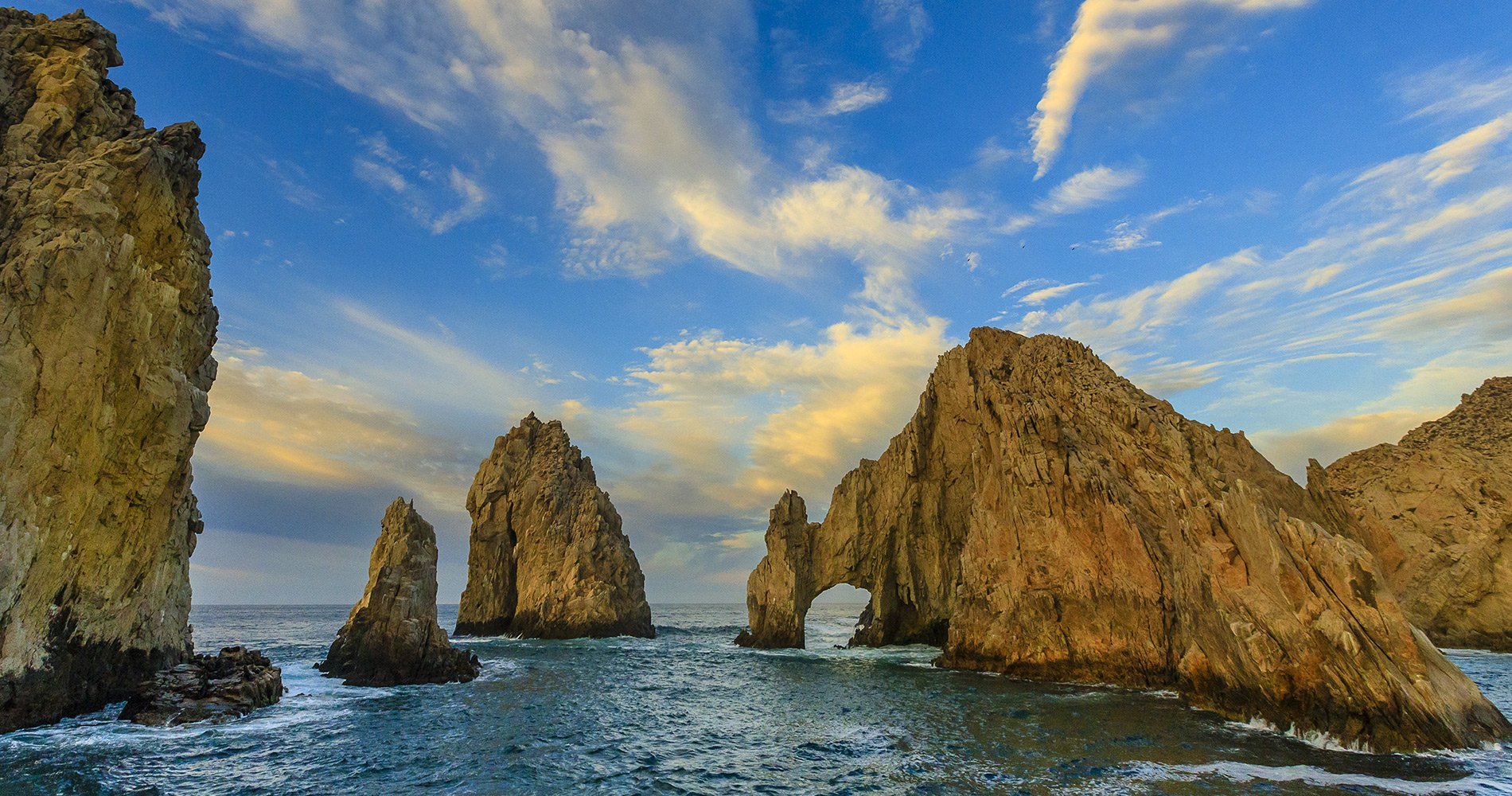 Small Ship Voyages Book Luxury Cruises with Lindblad National Geographic Cruises - California Coast